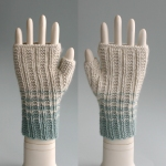 072611_blue_gloves_1