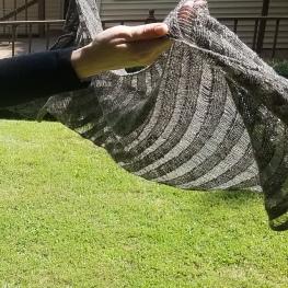 17-07-09-grey-clapotus-5_medium2